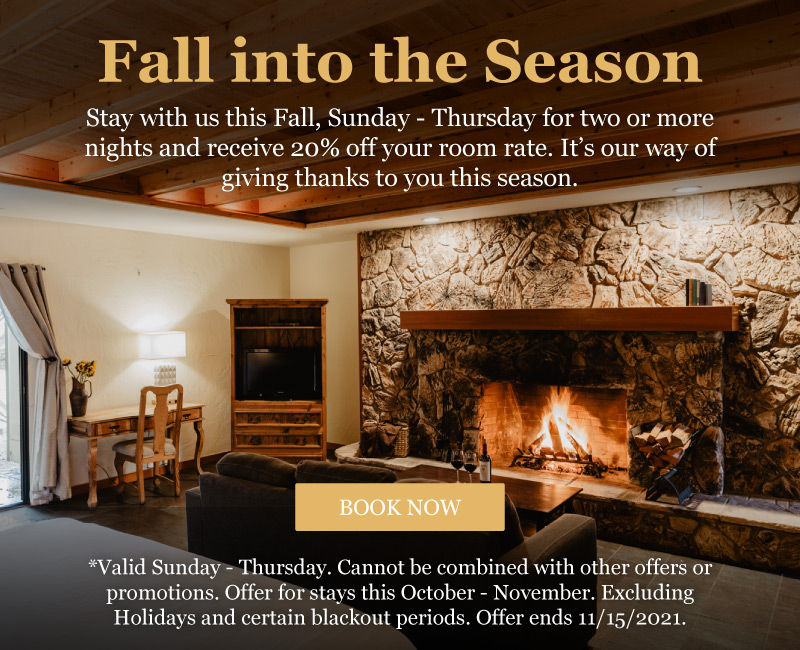 Fall-into-the-season